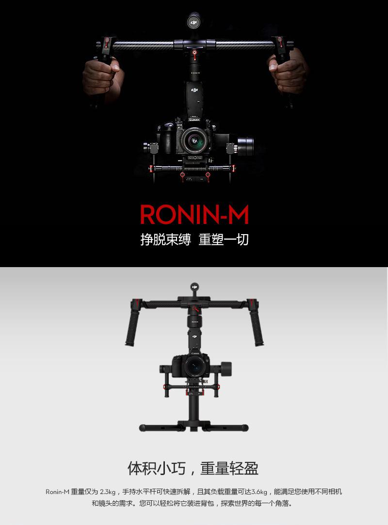 Ronin-M-___01